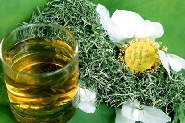 Cách chế biến trà giảm cân từ lá sen