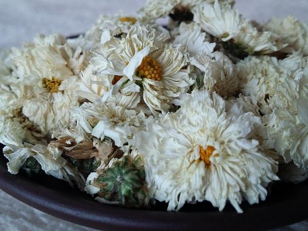 hoa cúc trắng khô