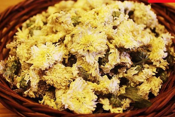 hoa cúc khô